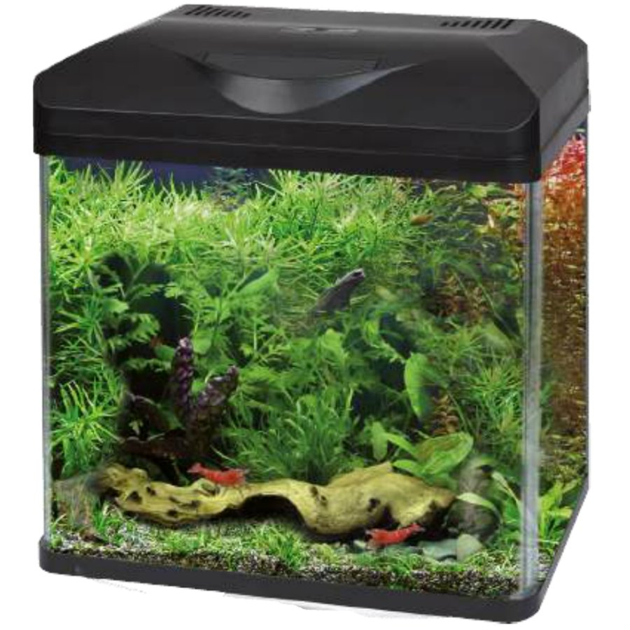 Wave laguna led acquario completo ulisse quality shop for Acquario shop online