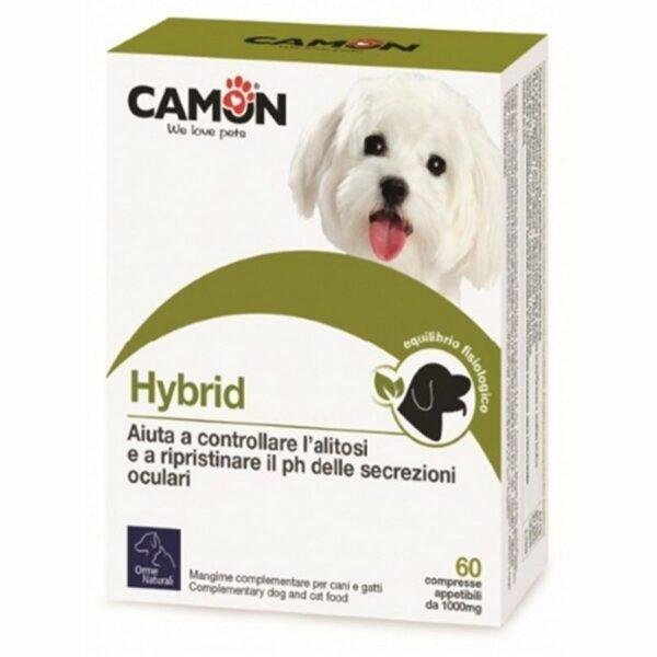 Camon compresse Hybrid 60