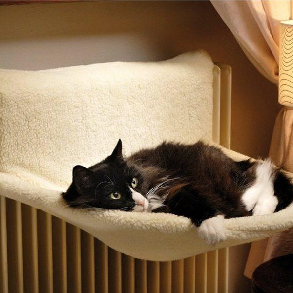 Gatto e termosifone, un amore a prima vista