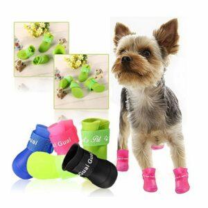Scarpine Impermeabili Colorate per Cani