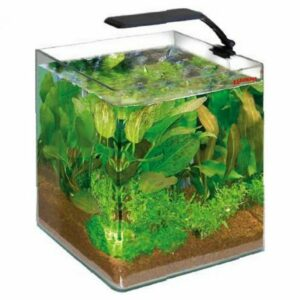 Wave Box Cubo 25 Orion LED Nano Acquario Dolce