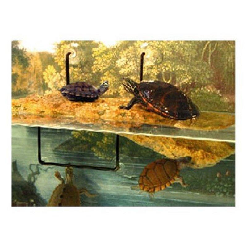 Isola per tartarughe zoo med turtle dock ulisse quality shop for Tartarughiere e accessori