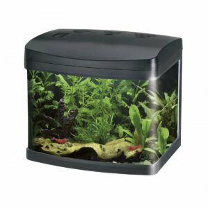 Wave XCUBE 40 LED Acquario Completo