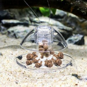 Trappola per Lumache da Acquario Ocean Live