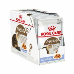 Royal Canin Ageing 12+ Gelatina Box 12 pezzi